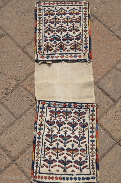 "Antique Shahsavan flat woven mini khorjin 8-1/2"" X 27"".  Circa 1900. Soumac bud and flower design on cotton ground. All natural colors. Fine original condition."