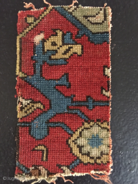 Trans Caucasian fragment? Wool pile on an all silk foundation,extremely fine weave. 18x10 cm