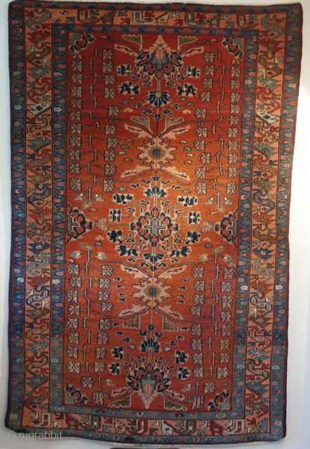 Late 19th cent.,  full pile,  near perfect Mehraban,  'Queen of the Hamadans'.  Natural dyes.  Professionally washed.  