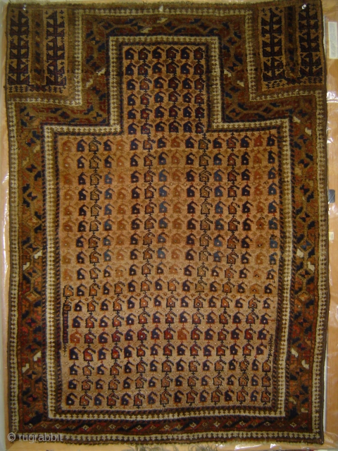 Unusual Baluch prayer rug with 305 Botehs and one Snake-Dragon. Excellent condition; sides re-wrapped