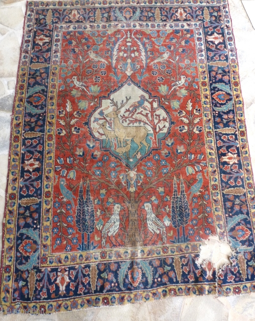 Tabriz, second part 19th, 183 x 134, the round of the hole is not rotten.