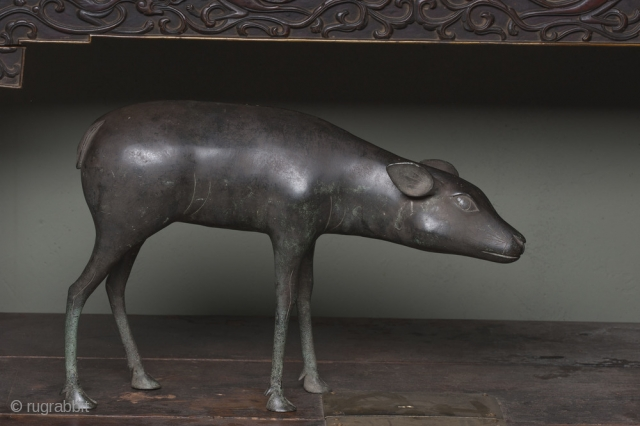 late  17th /early 18th  c monumental bronze of the elusive Asian Muntiac type deer .  This Chinese bronze has a drawing style that is probably from a European or  ...
