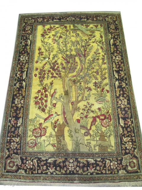 "Kirmanshah Persian knotted circa in 1918 antique, collector's item, 214 x 139 (cm) 7'  x 4' 7""  carpet ID: K-636
