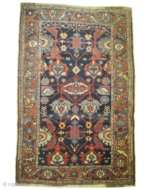 "Baktiar Louri Persian circa 1905 antique, collector's item, Size: 212 x 137 (cm) 6' 11"" x 4' 6""  carpet ID: K-4358