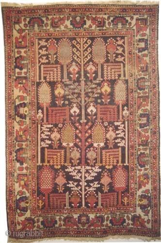 """Baktiar Persian circa 1895 antique.  Size: 205 x 136 (cm) 6' 9"""" x 4' 6""""  carpet ID: K-4397 Vegetable dyes, the black color is oxidized, the knots are hand spun lamb  ..."""