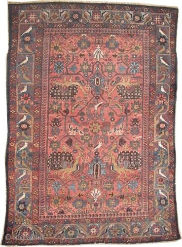 "Baktiar Persian circa 1905 antique. Collector's item, Size: 195 x 127 (cm) 6' 5"" x 4' 2""  carpet ID: K-4972  Vegetable dyes, the black color is oxidized, the knots are hand  ..."