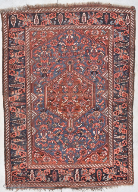 """#7784 Shiraz Rug  This circa 1900 Shiraz measures 4'8"""" X 6'5"""" (146 x 198 cm). The way the ends are finished this is probably a Quashki and the wefts are brown which usually  ..."""