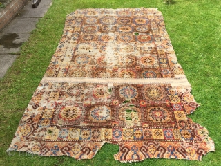 Rare antique Kashgar carpet first half 18 c recently discovered in Tibet. Size is 310 x 175 cm it has been slightly reduced in length. Great colour and the softest wool feels like  ...