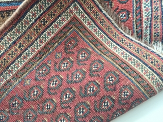 Very rare antique camel ground camel wefted Afshar prayer rug ca 1880 size 109 x 73 cm