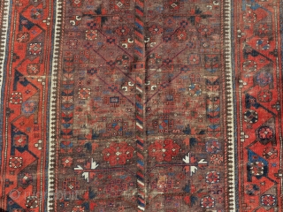 Iconic Khorosan Baluch tree rug on a brown ground with an older Timuri border type.