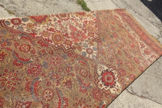 KING OF ALL NW CAMEL HAIR CARPETS,1880's