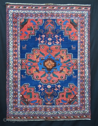 Beautiful Afshar rug in excellent pile, all natural dyes, no repairs whatsoever.