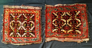 A pair of very old Southpersian bagfaces from a Dutch private collection. Exceptionel colours.