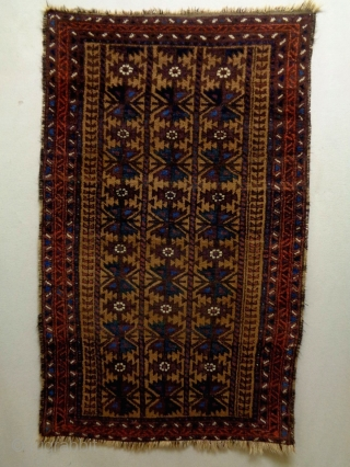 Baluch