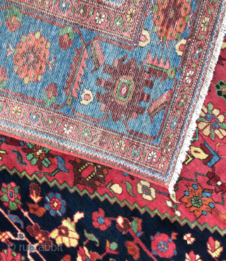 Large Dark Blue Field Malayer Carpet circa 1900 size 12'2'' x 19'4'' / 370 x 590 cm  in original and perfect condition, fine quality and lovely colors