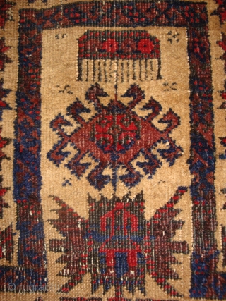 Antique Baluch Tree in Camelhair field prayer rug. Very fine weave. One of the oldest examples of this type.