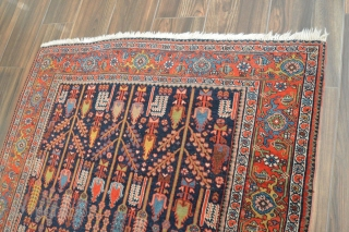 """Nice Bidjar with cypress pattern, wool on cotton, low even pile, 4'7"""" x 6'11"""". beautiful colors. Very decorative rug."""