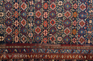 19th Century Shirvan Chi-Chi Rug in Perfect condition Size 150 x 278 cm