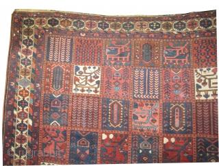 "Baktiar Persian circa 1915 antique, Size: 305 x 217 (cm) 10'  x 7' 1""  carpet ID: P-4799 The black color is oxidized, the knots are hand spun wool, the shirazi borders  ..."