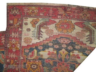 """Farahan Persian knotted circa in 1885 antique, collector's item, 175 x 122 (cm) 5' 9"""" x 4'  carpet ID: K-5542 The knots, the warp and the weft threads are hand spun wool.  ..."""