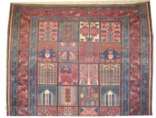"Baktiar Persian circa 1900 antique. Collector's item. Size: 199 x 144 (cm) 6' 6"" x 4' 9""  carpet ID: K-4166 Vegetable dyes, high pile, good condition, the knots are hand spun lamb  ..."