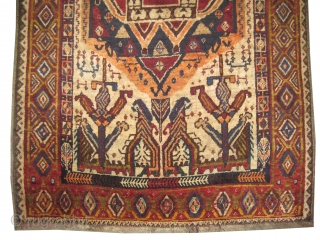 "Gabbeh Nomad Persian circa 1905 antique. Collector's item. Size: 169 x 116 (cm) 5' 6"" x 3' 10""  carpet ID: M-393