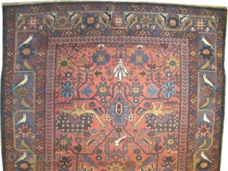 "Baktiar Persian circa 1905 antique. Collector's item, Size: 195 x 127 (cm) 6' 5"" x 4' 2""  carpet ID: K-4972