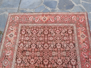 382 x 164  cm