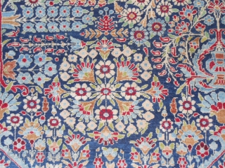 216 x 140 cm  (ft.7.08 by ft.4.59)