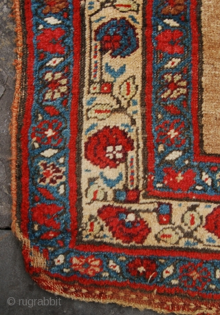 Lovely antique camel field Bijar rug. 19th century. Some minor wear but no repair. Floppy handle. 250 x 122cm.