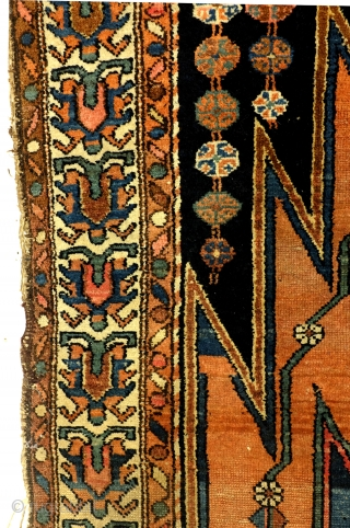 Mazleghan, Koerdish, 195 x 97 m. wool on cotton. Natural colors. 