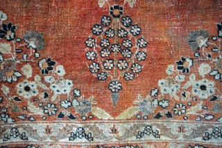 Tabriz, Hadji-Jalili. 