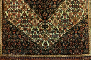 Senneh, Bidjar. 