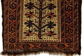 Prayer rug, Beloudj.  90 x 160 Cm.   3ft. x 5ft. 4 inch.  wool on wool.