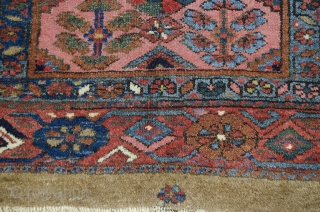 TB2 Antique Kolyai Rug 190x110cm Circa 1900. Gorgeous antique Kolyai rug.   Two rows of shrub design separated by multicoloured lozenges on a light pink background framed with a  geometric  ...