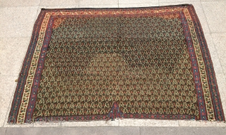 Persian Senneh horse cover size 110x150cm