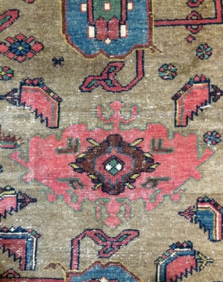 Persian Kurdish carpet Background color camel wool all are color natural dyes size 190x100cm