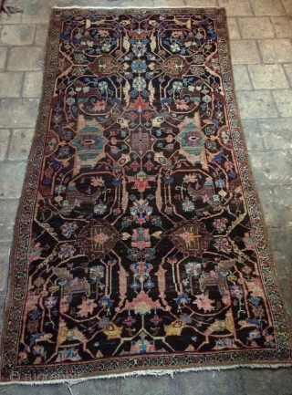Bidjar carpet size 230x120cm all are colors natural dyes